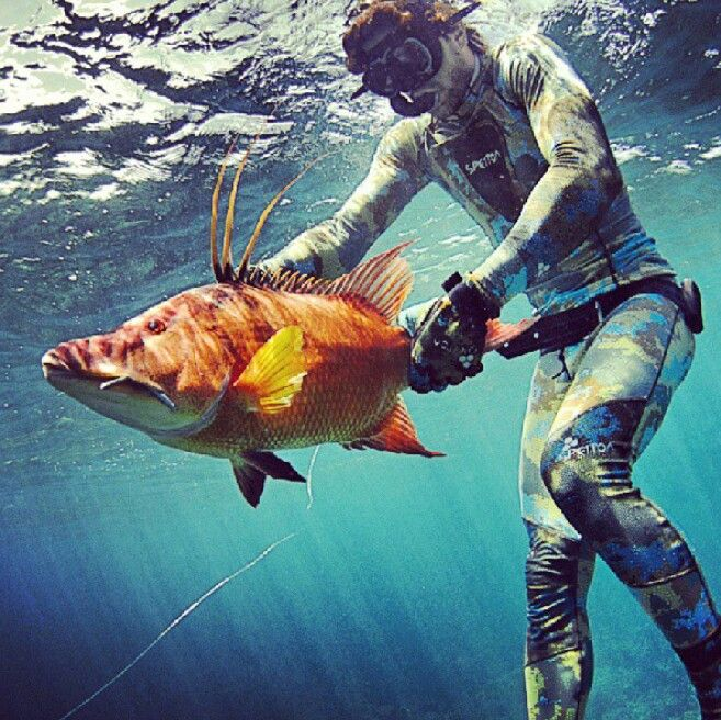 968 best the other woman images on pinterest fishing for Best fishing in florida keys
