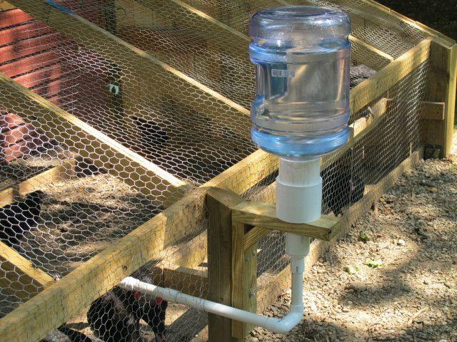 10 Chicken Water Station Ideas