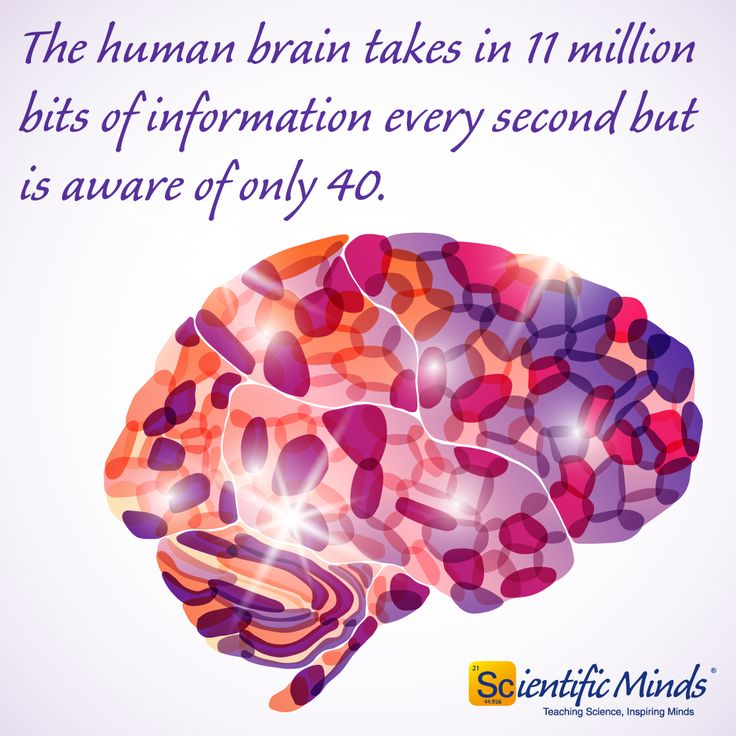 Science Facts Brain: 32 Best Science Facts Images On Pinterest