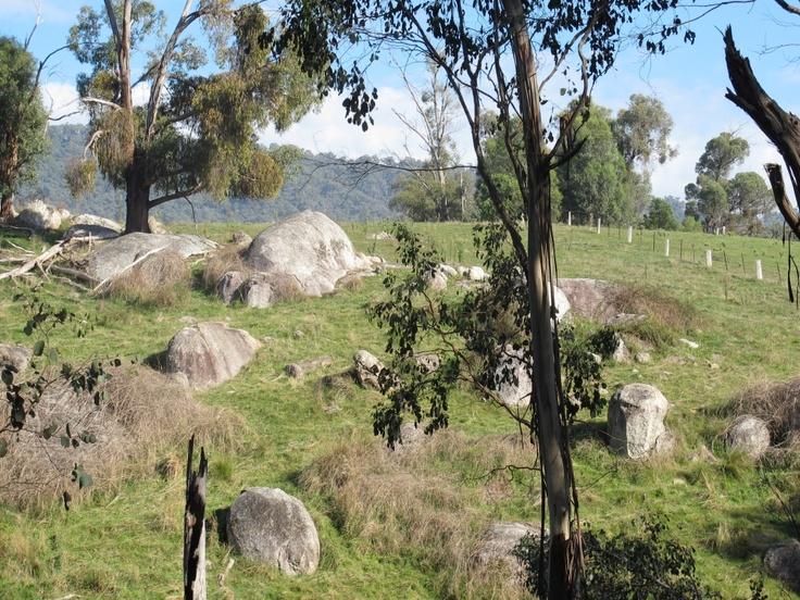 Granite tors by the roadside, north of Bright, Victoria.