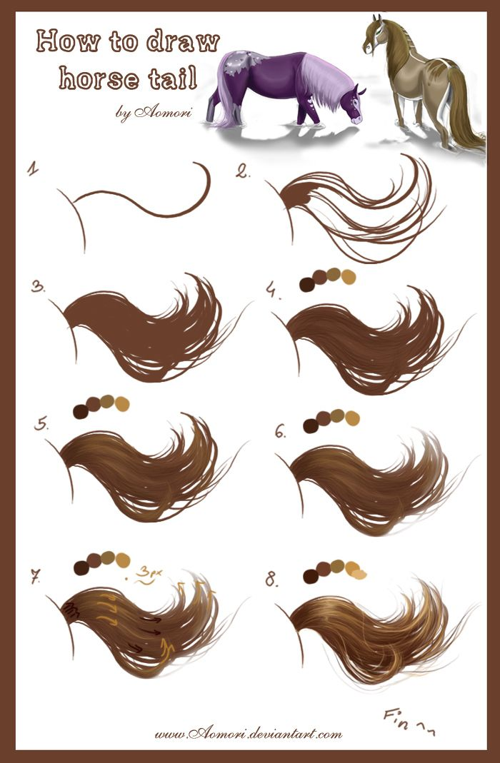 Tutorial___horse_tail_by_Aomori, how to Draw Horse Tails , how to draw horses, How to draw Animals, tutorials for drawing animals, animal anatomy, animal sketches, cute, kawaii, realistic, art teacher, art lesson, animals , tail, shading, color