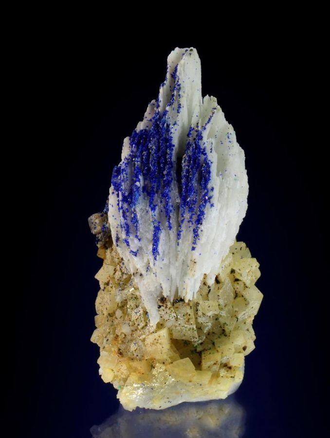 Azurite on Barite and Dolomite - Lilien adit, Kleinkogel, St Gertraudi, Brixlegg, Kufstein, Inn Valley, North Tyrol, Tyrol/Tirol, Austria Size: 42 mm