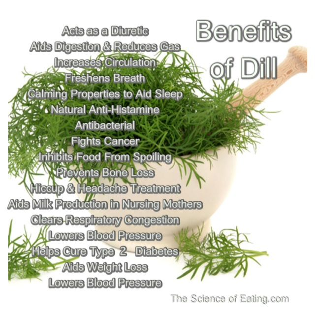 the importance of dill in to In order to prevent the dill from clumping, it's important to thoroughly dry the dill either before or after cutting use either a salad spinner or lay between two.