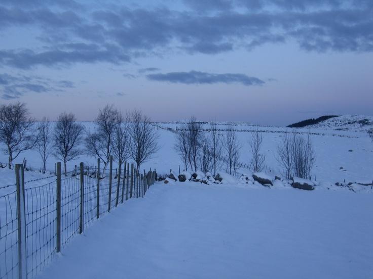 Vinter på Flassi