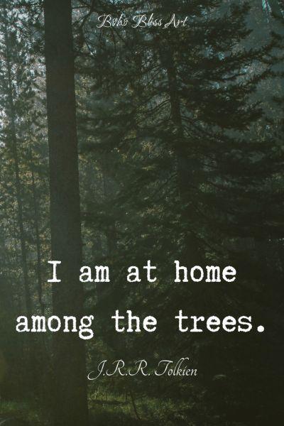 Trees Glorious Trees