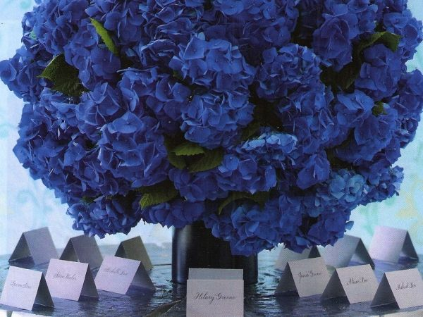 Blue Wedding   Flowers, Gifts, Weddings & Events in New York City   Michael George