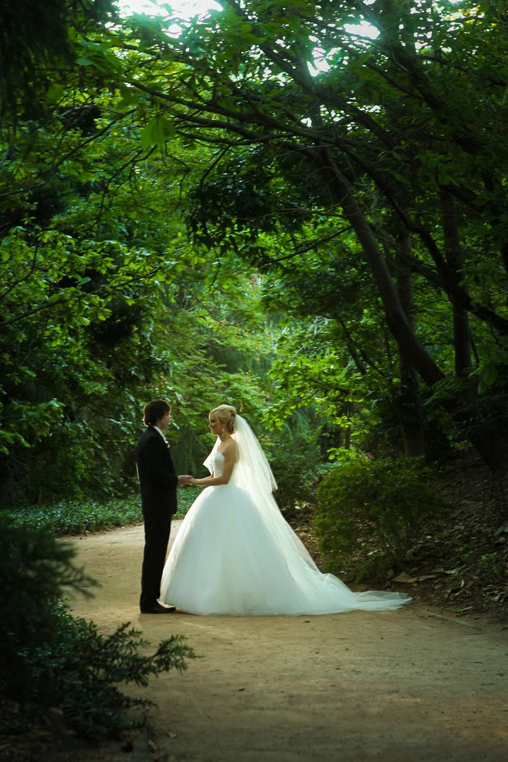 Bride & Groom + trees