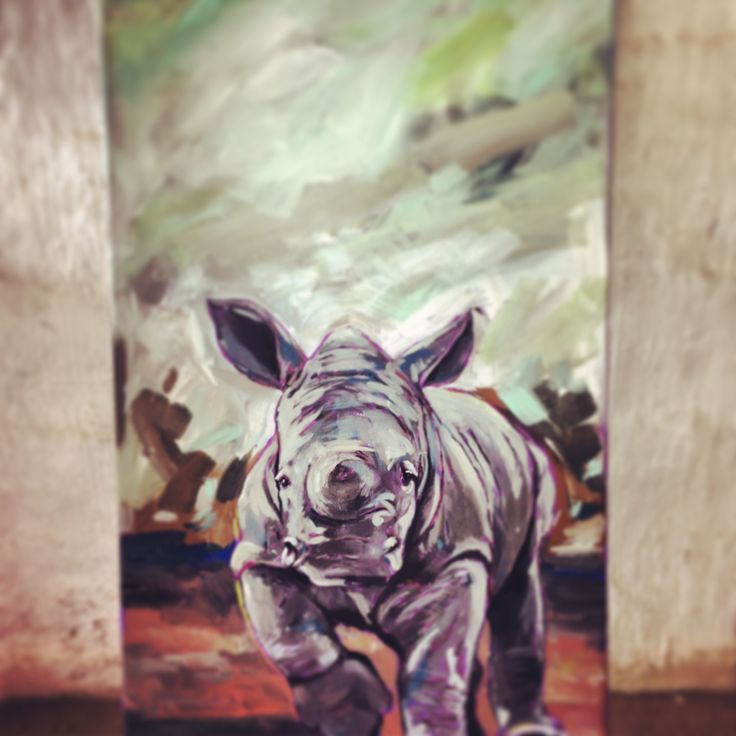 Rhino - Cindy-Anne Doubell
