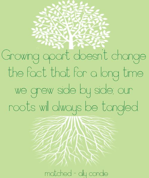 Can you and I really ever grow apart, after 22 years and all the hell the past 3, our BRANCHES are tangled...we just have a few nest that we need to deal with!  ~Scotty S.