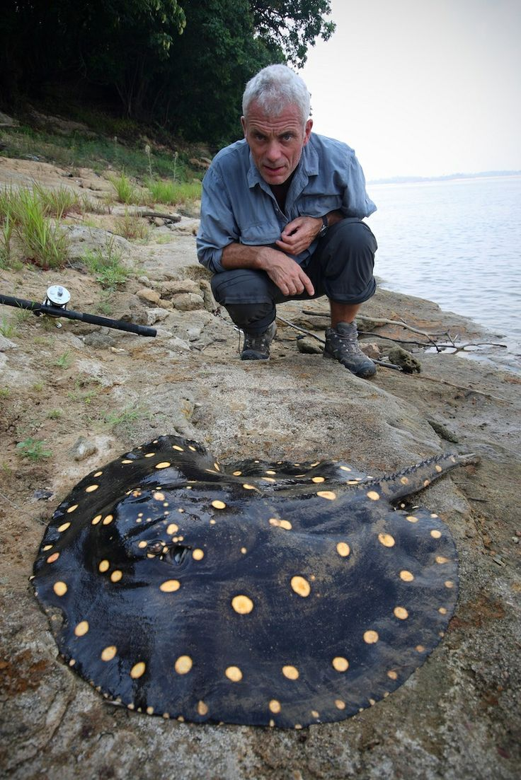 "Jeremy Wade of ""River Monsters"" and a beautiful stingray. Photo credit: Discovery Networks."