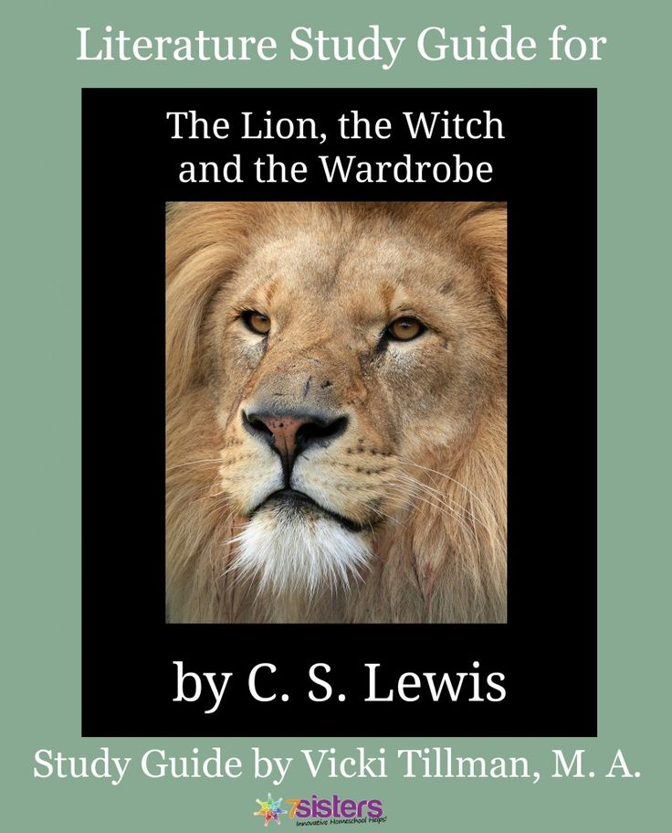 literature the chronicles of narnia and