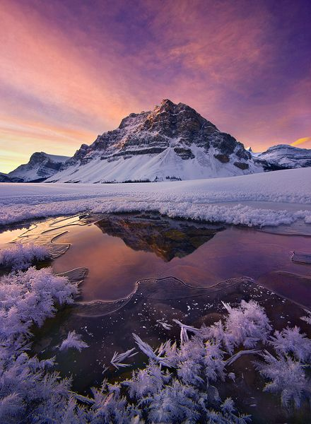 Color on the Cold, Canadian Rockies, Alberta