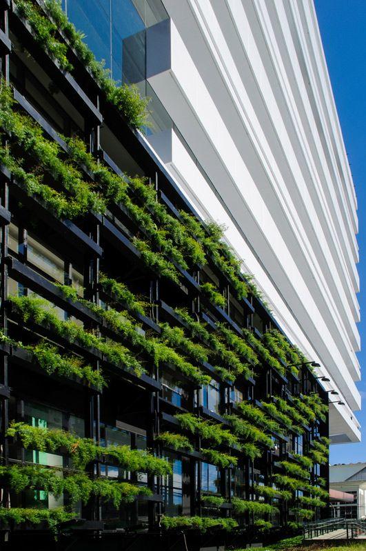 Cortina verde de 370 metros quadrados auxilia no sombreamento dos três primeiros pavimentos da fachada leste