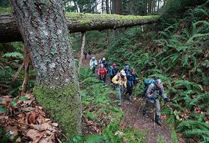 Pete Girard, right, leads a hike on Squak Mountain, usually snow-free.