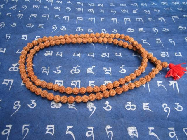 According to ancient Hindu scriptures Rudraksha Beads Brings peace of mind, protects against evil, and brings prosperity. Buddha wore Rudraksha Beads, along with the Dalai Lama, Gandhi, and many enlightened yogis.  Researchers have found that Rudraksha Beads have electro-magnetic properties and like magnets, they work on the principle of Dynamic Polarity. For instance, you can stabilize your heart beat by placing a singular bead over your heart.
