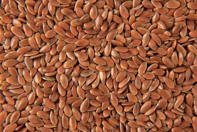 Flax Seeds - Get to know the History, Growth Habits & various Uses of Flax Seeds. http://www.viralspices.com/products-conventional-products-flax-linseeds.asp   #flaxseeds #flax seeds