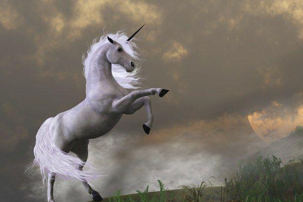 ¿Qué hacen todos estos unicornios en la Biblia? ¿Por qué se mencionan los unicornios en la Biblia? Este artículo te servirá para explicártelo.