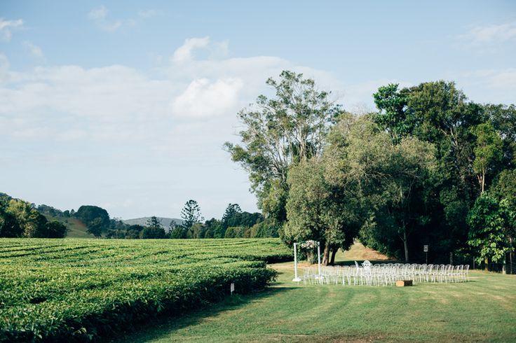camellia-weddings-madura-tea-estates-northern-nsw-wedding-venue-casuarina-weddings015.jpg