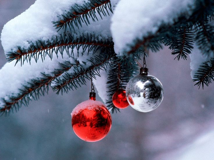 i love christmast