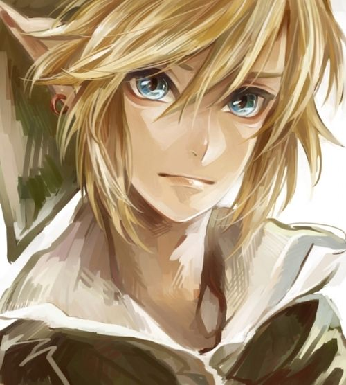 I've always had a thing for Link...