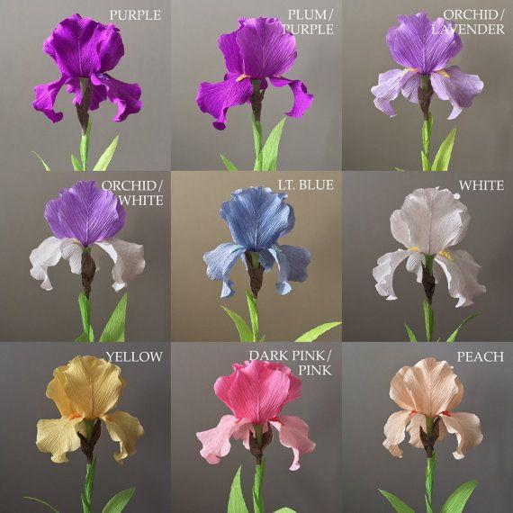 Papel Crepe barbudo Iris madre sola flores de la por NectarHollow
