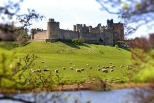 Alnwick Castle - England