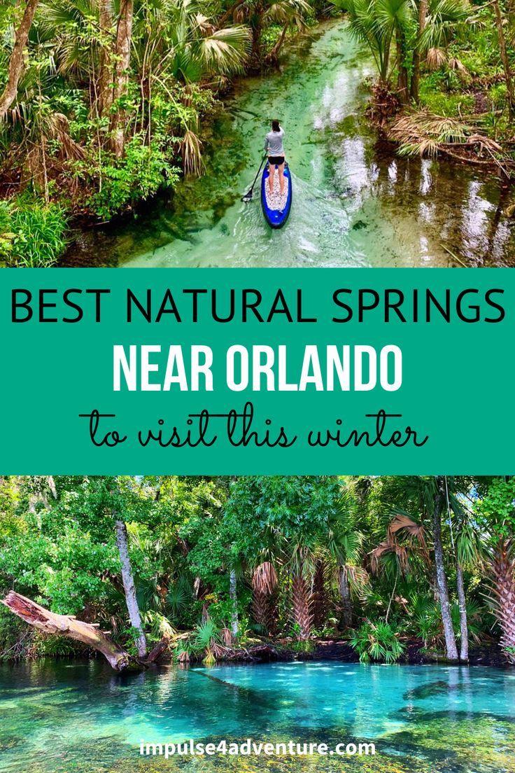 The 5 Best Natural Springs Near Orlando Impulse4adventure Florida Adventures Springs Near Orlando Florida Theme Parks Florida Adventures