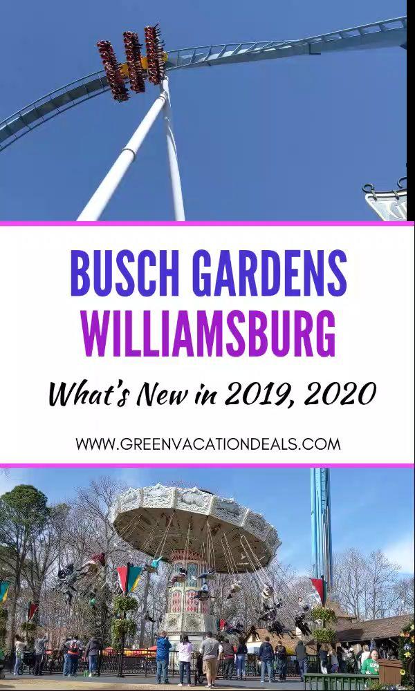 Busch gardens williamsburg what 39 s new in 2019 2020 - Busch gardens williamsburg vacation packages ...