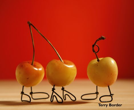 BENT OBJECTS, A Story About Cherries