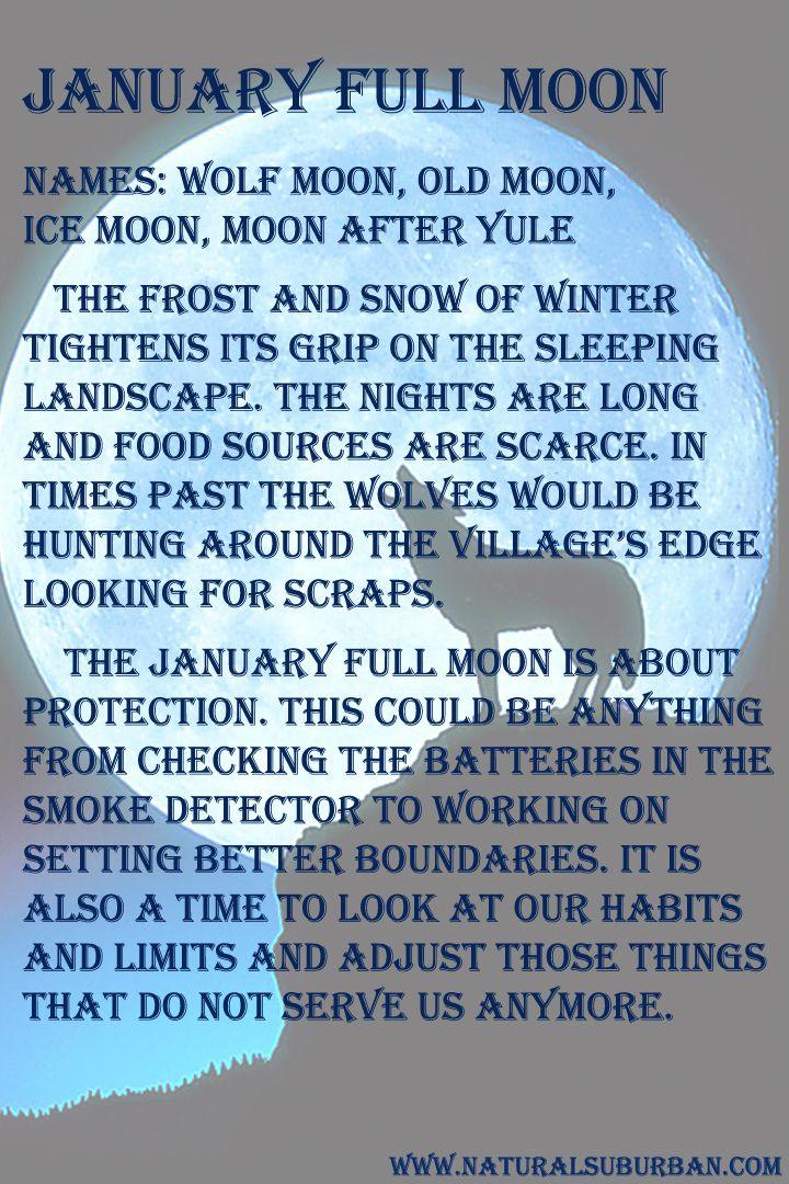 ☪Sเรtєгร ๏Ŧ tђє ๓๏๏ภ☪ January ✦ Full Moon