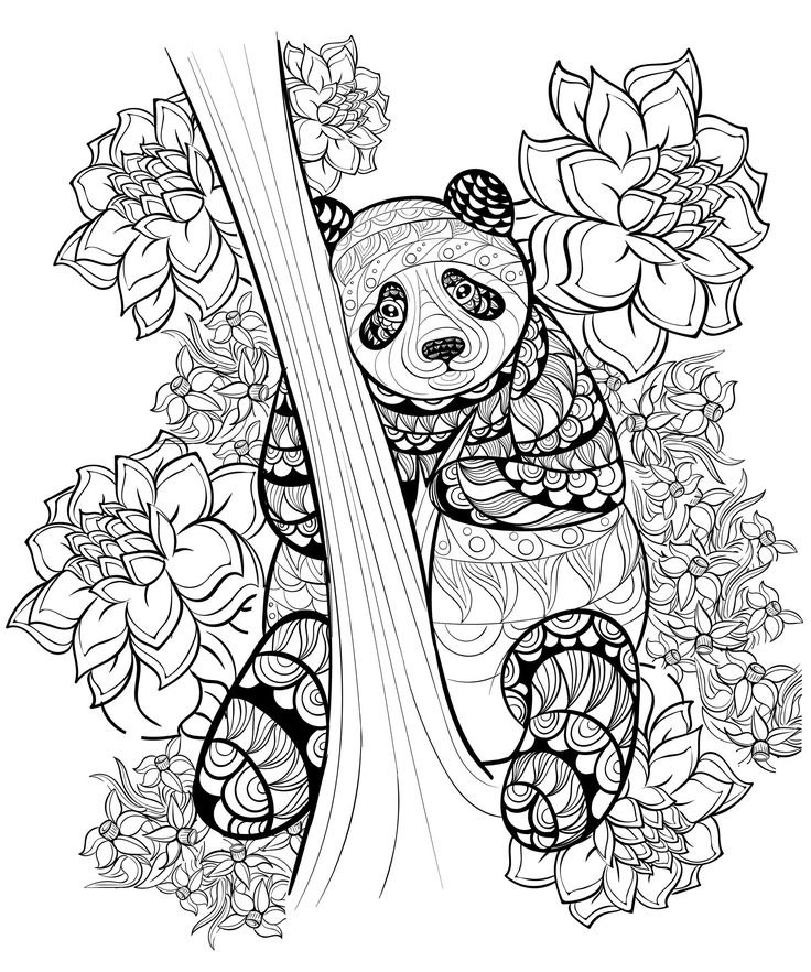 346 Best Coloring Bear Images On Pinterest Coloring Books Best Coloring Pages For Adults
