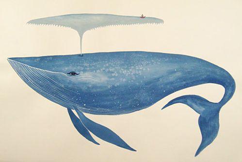 Animalarium: Light as a Whale