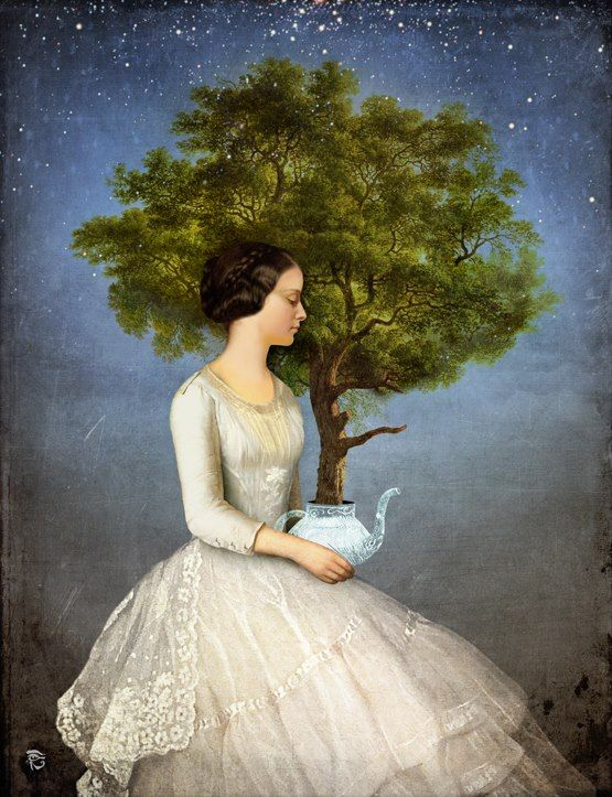 Tree Time - Christian Schloe