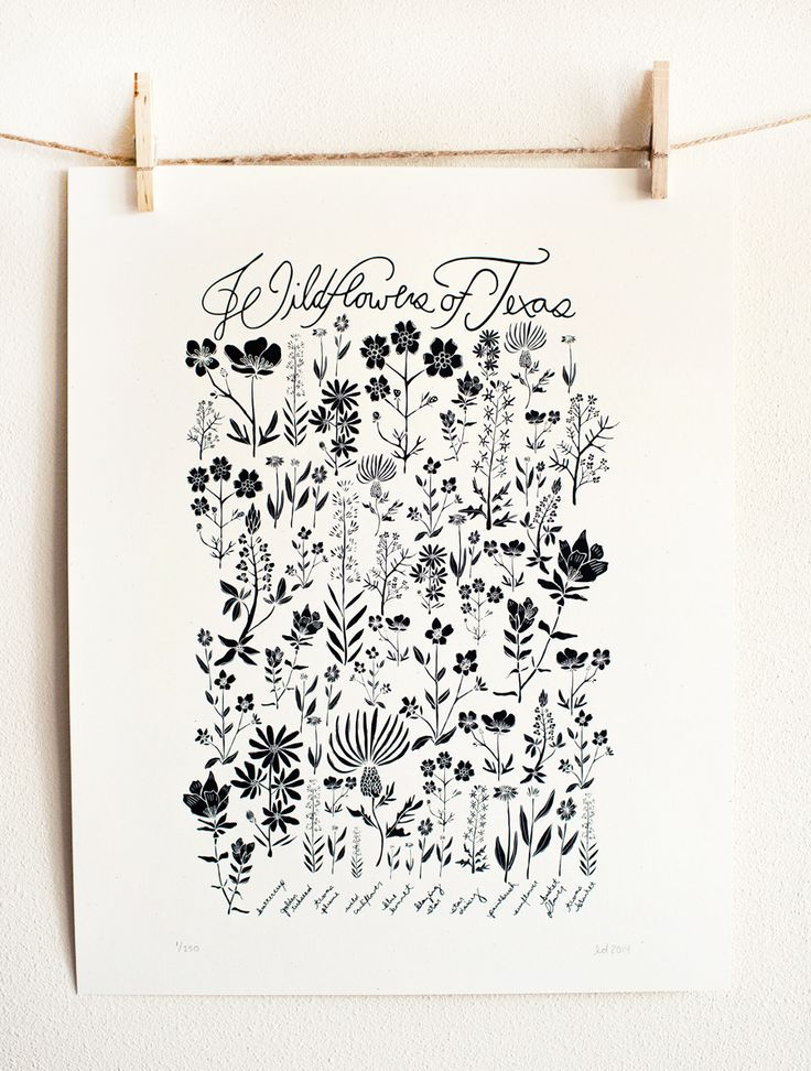 Wildflowers of Texas Poster by Leah Duncan