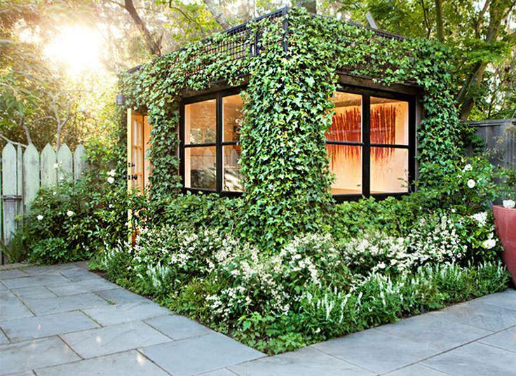 12 plantas que purificam o ar da sua casa e ainda deixam tudo mais bonito (Hera inglesa)