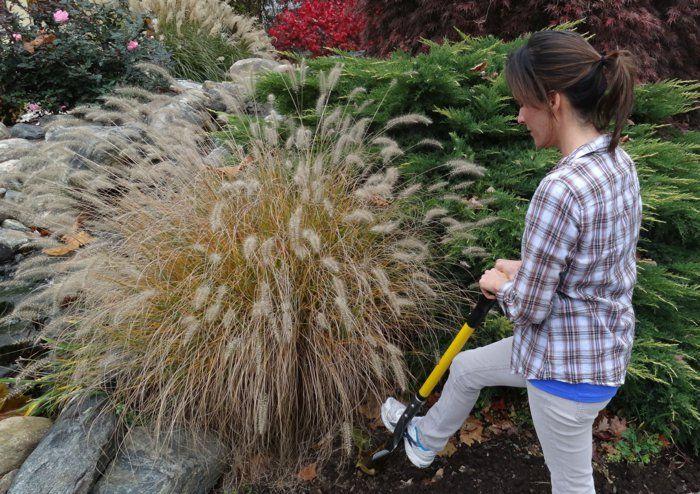 Die 225 besten Ideen zu Garten auf Pinterest Garten-Wasserfälle - wasserfall garten wand