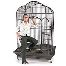Voliera gabbia recinto Parrot Cage  PAPPAGALLI UCCELLI H 176 cm