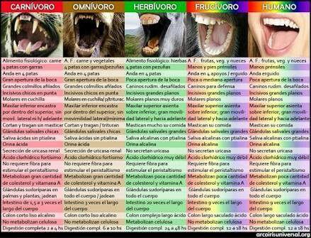 Distintos tipos de dentaduras. La de los humanos es de tipo frugívoro