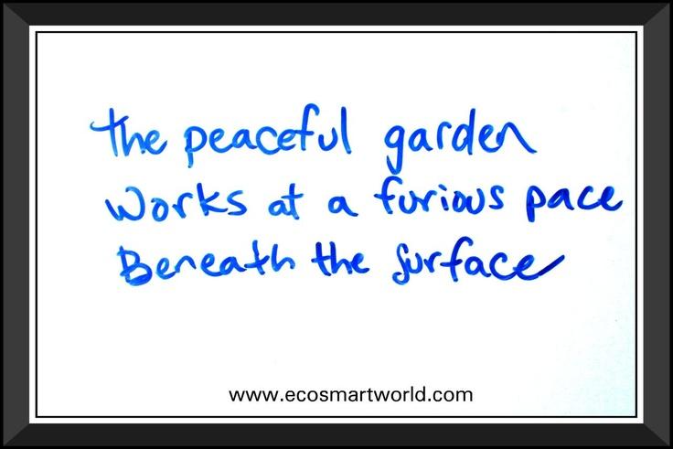 Life-inspired Haiku poems