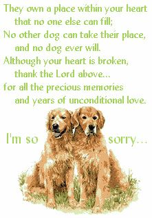 ... I am so sorry to hear that your babies passed away. Losing a pet is so difficult, and a lot of people don't understand that they are more than just dog to us... they are family. Love is love and the heart does not distinguish between 2 legged or 4 legged. <3