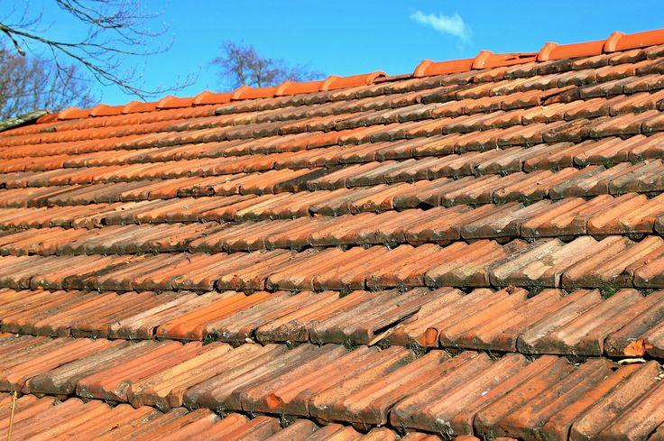 1000 Id Es Sur Le Th Me Asphalt Roof Shingles Sur