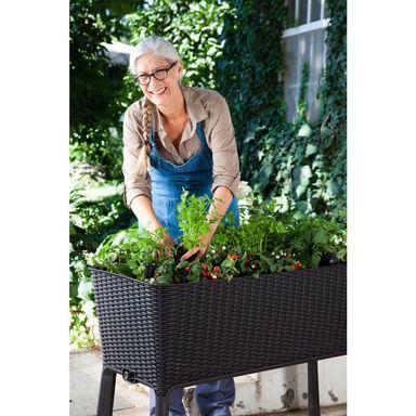Warzywnik Zielnik 50 X 115 Cm Plastikowy Brazowy Easy Grow Keter Donice Ogrodowe W Atrak Elevated Gardening Raised Planter Boxes Patio Raised Garden Beds