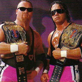 WWF Wrestling Tag Teams | ... fascinating thing I've read about pro wrestling since Roland Barthes
