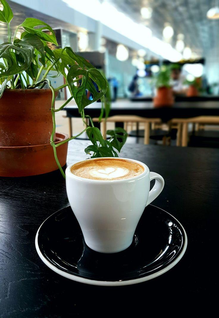 """Cappuccino"", 1/15, Jakarta"