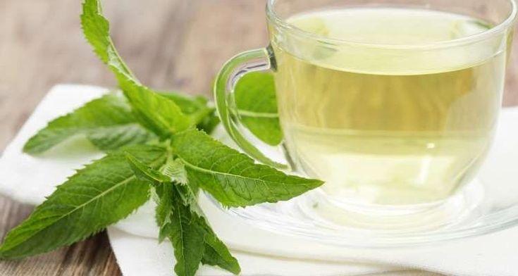 Φτιάξτε ένα γευστικό και καταπραϋντικό τσάι μέντας εύκολα και γρήγορα