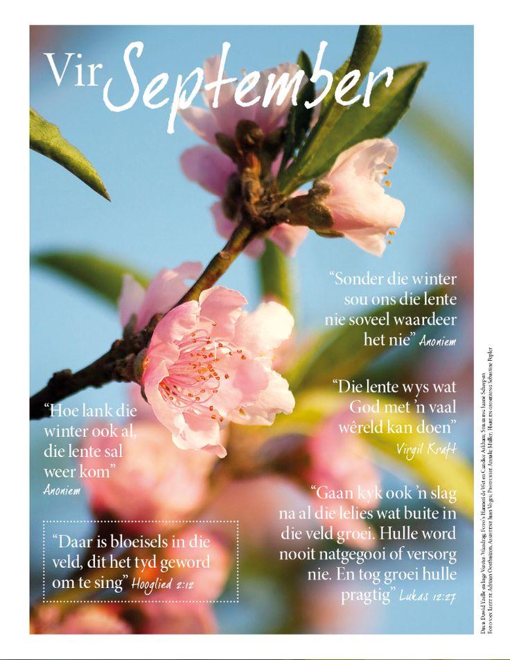 Lente bloeisels/ Spring Blossoms Fotograaf: Hanneri de Wet www.leef.co.za