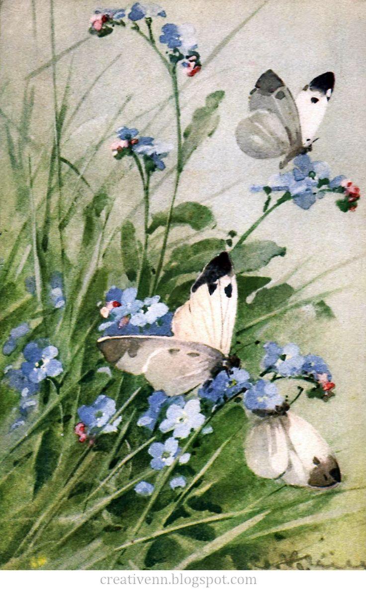 Vintage. Catherine Klein. Бабочки. Старинные иллюстрации. : На крыльях вдохновения