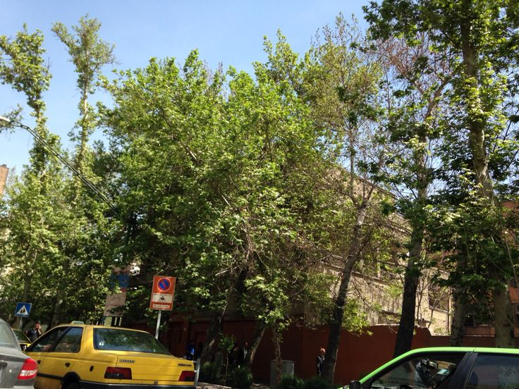 Tehran in early summer.  Green is clean.