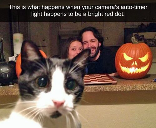 This is what happens when your cameras auto - timer light happens to be a bright red dot.