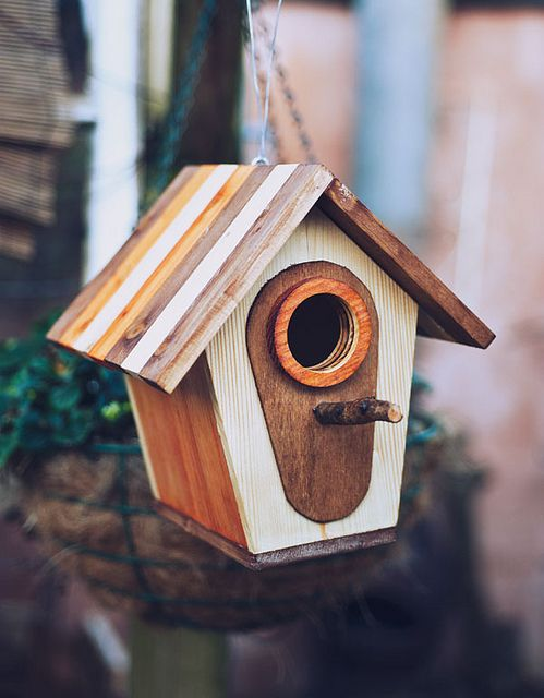 birdhouse modern style